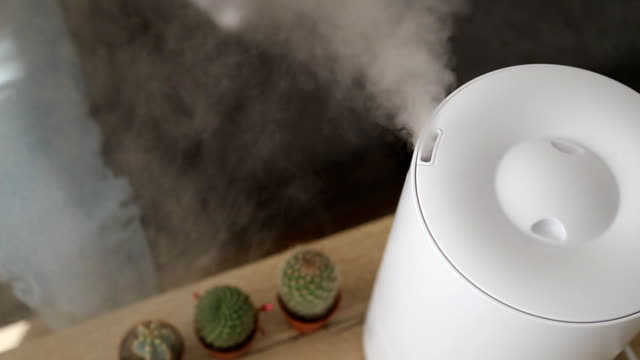 健康な空気。加湿器は、リビングルームで蒸気を分配します。女性は蒸気を手渡し続ける - 加湿器点の映像素材/bロール