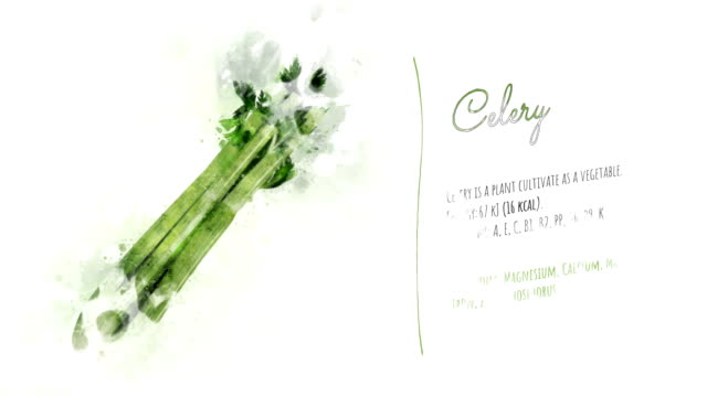 Healthy Celery Ingredients The animation tells about useful properties and substances contained in the growth of celery. A ready-to-use card can decorate your video about a vegetarian diet or a healthy lifestyle. celery stock videos & royalty-free footage