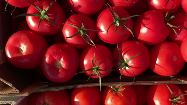 vídeos de stock e filmes b-roll de healthy diet - vegetarian food - engradado