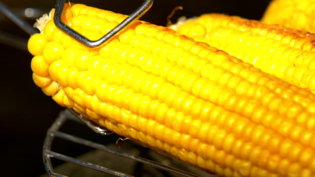 Healthy vegetarian barbecue with ripe golden corn on coals and turn it around by using barbeque tongs, close up Healthy vegetarian delicious barbecue with ripe golden corn on coals and turn it around by using barbeque tongs, close up seared stock videos & royalty-free footage