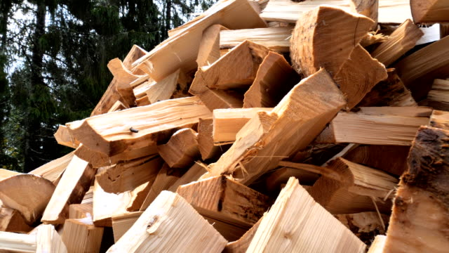 estonya'da bahçede odun yığını - şömine odunu stok videoları ve detay görüntü çekimi