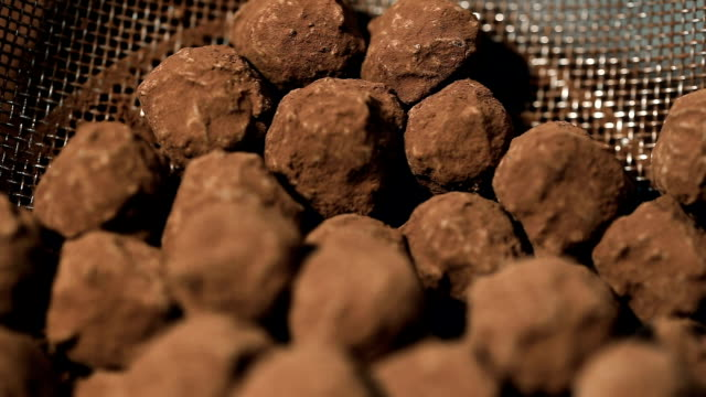 heap of Homemade truffles in a colander sifted from the remains of cocoa. video