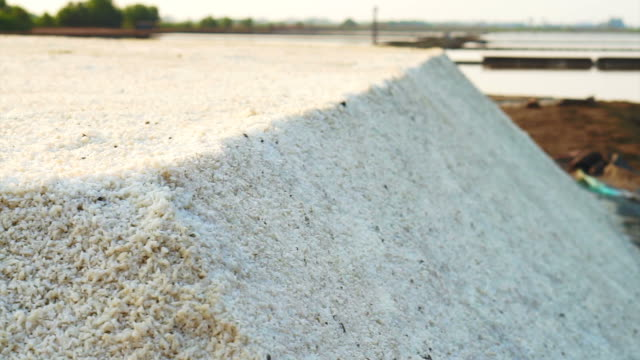 Heap of sea salt in salt pan, salt field with morning sun Heap of sea salt in salt pan, salt field with morning sun harrow agricultural equipment stock videos & royalty-free footage