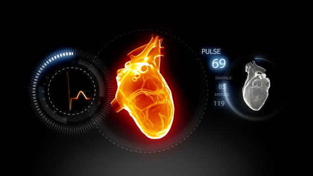 Heart Beat concept Human heart pulsating with pulse trace monitor human heart stock videos & royalty-free footage