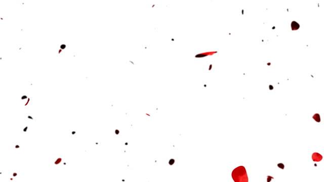Heart of Rose Petals exploding, Alpha video