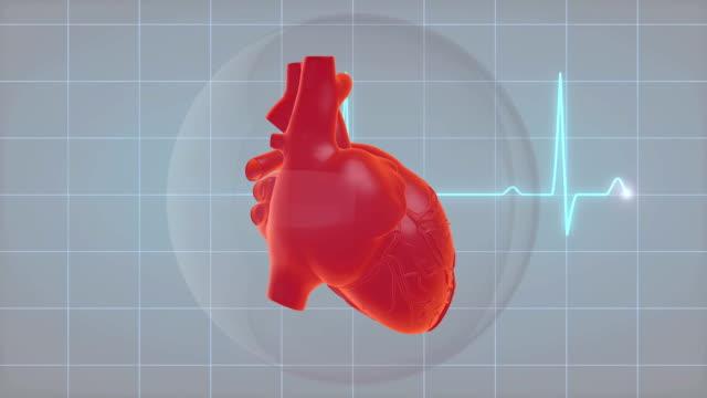 Heartbeat Heartbeat Animation heart internal organ stock videos & royalty-free footage