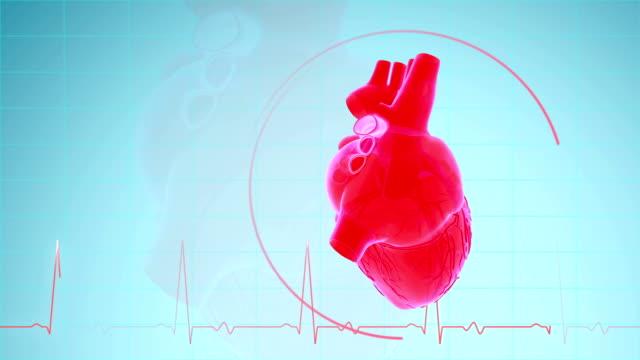 vídeos de stock e filmes b-roll de heartbeat with pulse waveform - coração humano