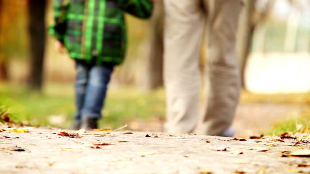 heartiness words to dear daddy during walk in autumn park - fathers day stock videos and b-roll footage