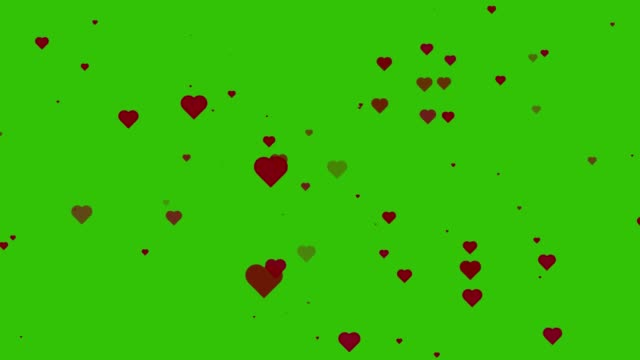 Hearts moving or floating on green screen. Valentine's day background. Love symbol motion graphic. Seamless loop.