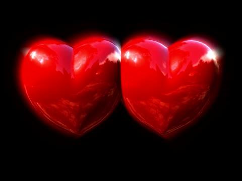 hearts  - inneres organ eines tieres stock-videos und b-roll-filmmaterial