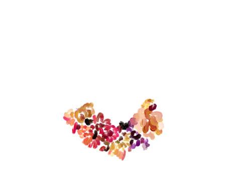 Heart-shaped valentine video