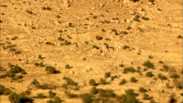 Heat haze effect in desert Heat haze effect in desert. heat haze stock videos & royalty-free footage
