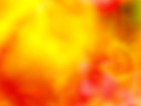 vidéos et rushes de vague de chaleur - canicule