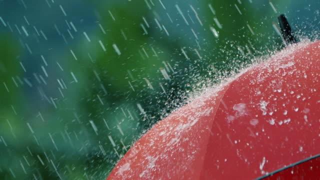 vídeos de stock e filmes b-roll de heavy rain falls on red umbrella - guarda chuva