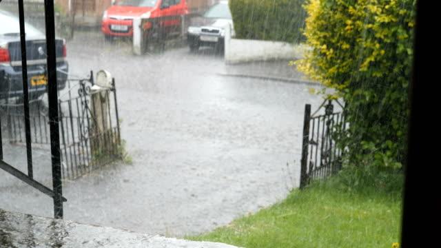 heavy rain in summer - pioggia torrenziale video stock e b–roll