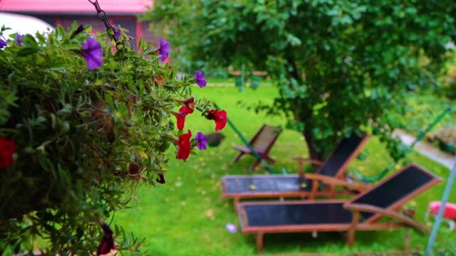 vídeos de stock e filmes b-roll de heavy rain in the country house on a summer day. - estónia