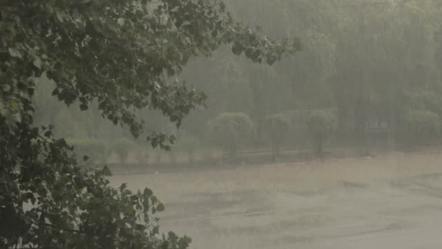heavy rain outside outside the window. the storm fell in the city. cars passing through the water. the road was flooded with water - pioggia torrenziale video stock e b–roll