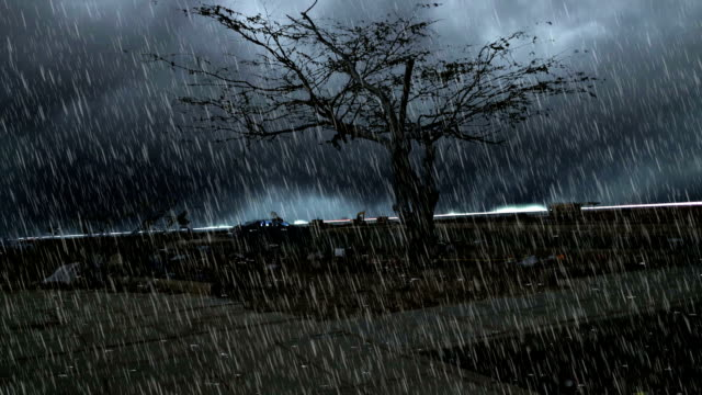 heavy rain over Tree standing under natural disaster