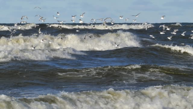 Heavy Waves on Baltic Sea During Stormy Weather Slow Motion, Gdansk Poland
