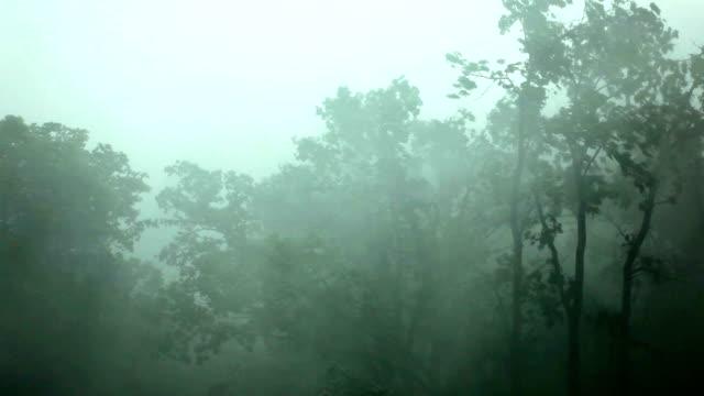 heavy wind and rain