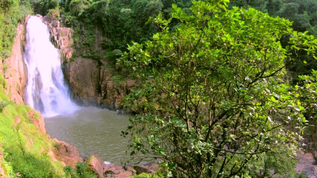heaw narok waterfall. - attività equestre ricreativa video stock e b–roll
