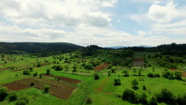 Heli Shot Of A Green Landscape video