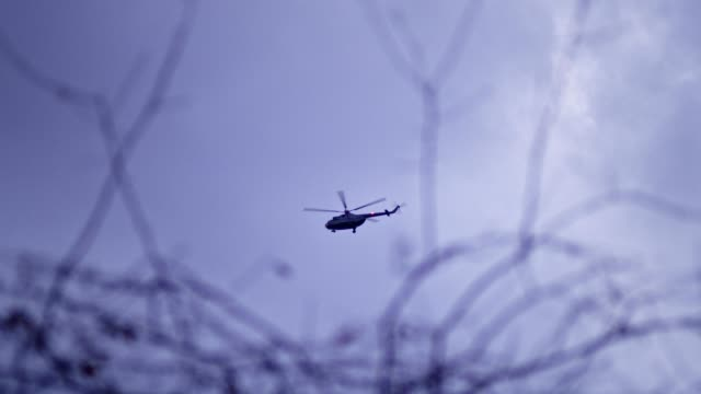 Helicopter flying above treetops