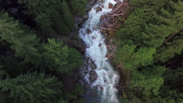 Helicopter View Flying Upstream of Raging Forest River