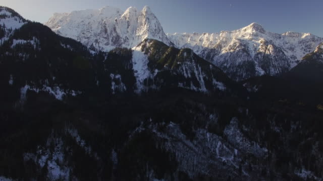 Helicopter View of Massive Snow Covered Mountain Peaks Above Thick Forest Trees video