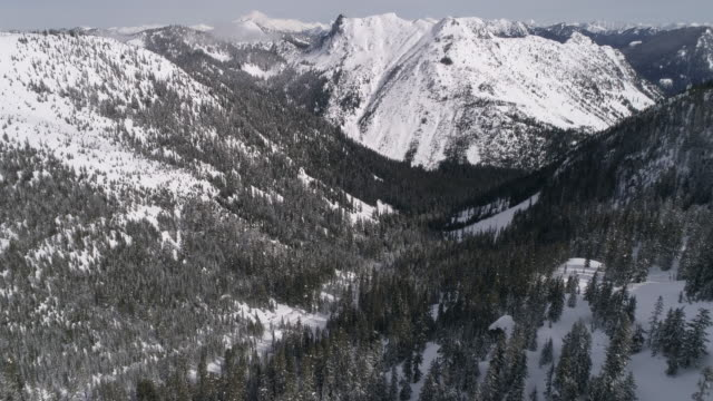 Helicopter View of Sunny Forest Valley with Snow Covered Cascade Mountain Range Peaks video