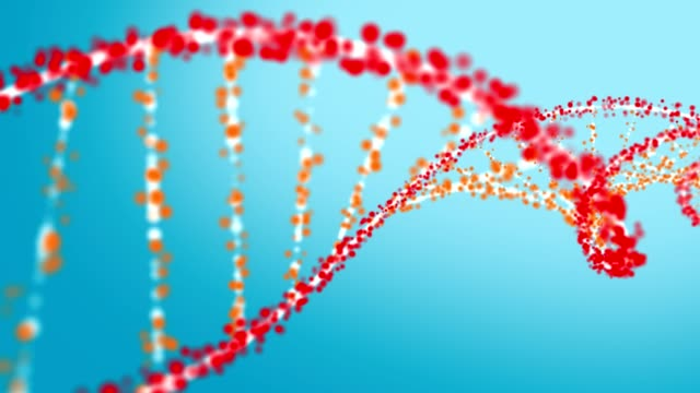 vidéos et rushes de formation de structure hélice d'adn - protéine