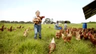 istock Helping out around the farm 924515998