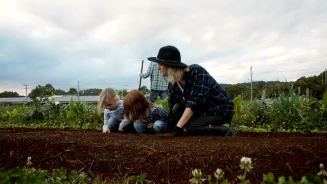 helping out around the farm - gospodarstwo ekologiczne filmów i materiałów b-roll