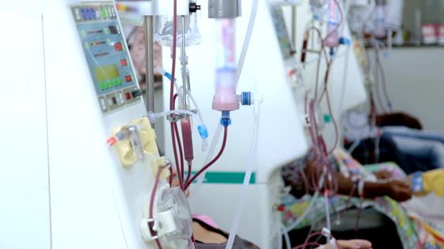vídeos de stock, filmes e b-roll de hemodiálise em pessoas no equipamento - rim órgão interno