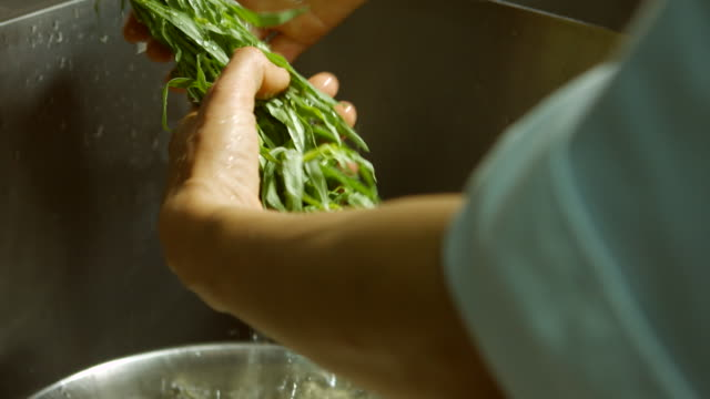 Herb under flow of water. video