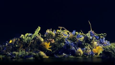 kräutertee aus zitronenmelisse, kornblume, brennnessel und ringelblume - kräuter stock-videos und b-roll-filmmaterial