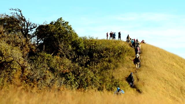 herd of backpackers walking to mountain video