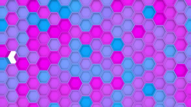 vídeos de stock e filmes b-roll de hexagon geometric loop transitions - mosaicos flores