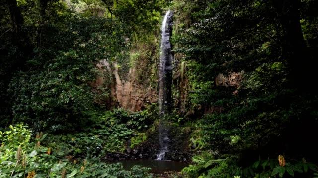 Hidden waterfall in Santana city, Madeira island