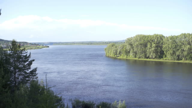 High Above River Looking Straight Down Through Thick Forest of Tall Evergreen Trees. Landscape with beautiful and relaxing river and forest trees on sunny summer day. Nature composition - video