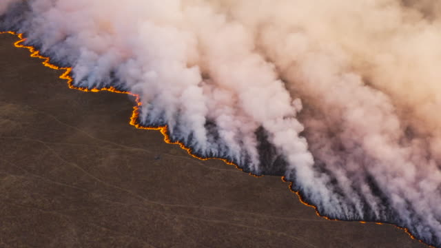 high aerial fly over view of a grass fire in the okavango delta, caused by drought and climate change, botswana - clima video stock e b–roll