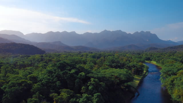 High aerial landscape view of river in tropical green amazon forest with mountains Beautiful scenery of brazilian nature amazon stock videos & royalty-free footage