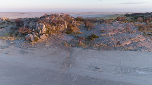 High aerial zoom out view of a baobab on Kubu island High aerial zoom out view of a baobab on Kubu island, Makgadikgadi Pans ,Botswana baobab tree stock videos & royalty-free footage