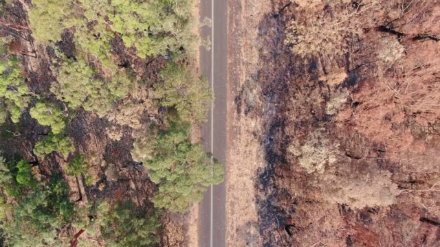 High angle aerial bird's eye drone footage of a country road near Sydney, New South Wales, Australia, leading through a partly burnt forest affected by the devastating bushfire season end of 2019.