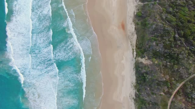 High angle aerial bird's eye drone footage of famous Seventy Five Mile Beach on Fraser Island, Queensland, Australia. The Island is popular for tourist with four-wheel drive vehicles. High angle aerial bird's eye drone footage of famous Seventy Five Mile Beach on Fraser Island, Queensland, Australia. The Island is popular for tourist with four-wheel drive vehicles. australia stock videos & royalty-free footage