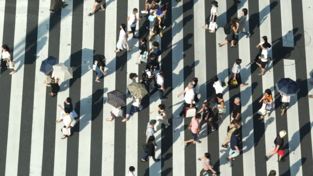 4k high angle aerial view wide shot of pedestrian man and woman tourist walking crossing the street crosswalk with traffic driving cars on the road in summer at ginza, tokyo, japan - япония стоковые видео и кадры b-roll