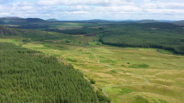 High angle drone view of an area of forest in rural south west Scotland Aerial view of an area of forest, in rural Dumfries and Galloway. The 4K video was captured using a drone in a remote location on a bright summer morning. galloway scotland stock videos & royalty-free footage
