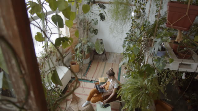 vídeos de stock e filmes b-roll de high angle of woman working on laptop in large room with plants - remote work