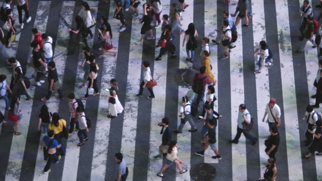 high angle / top-down schuss von passanten auf der straße fußgängerüberweg. großstadt mit menschenmenge auf den zebrastreifen. - bevölkerungsexplosion stock-videos und b-roll-filmmaterial