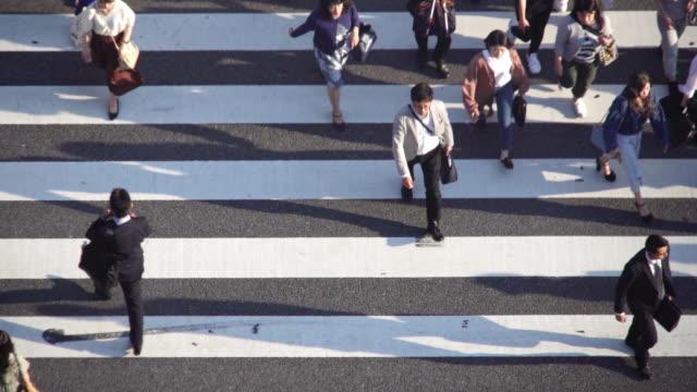 高角図 東京でシマウマ交差点を横断する群衆。 - 夜明け点の映像素材/bロール